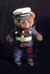 marinebearlg